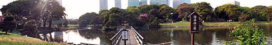 A Hama Rikyu Garden