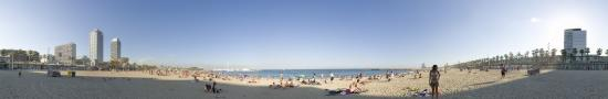 The great beach of Barcelon next Olympic harbour
